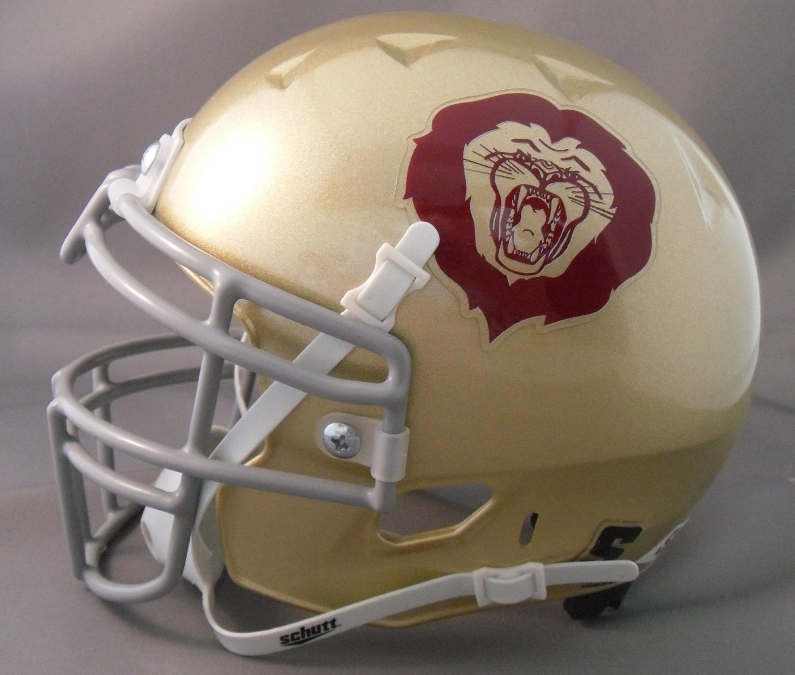 Back Bumper Football Helmets Types : Helmetnation sacs lions youth football
