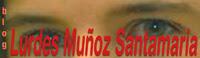 Blog de Lourdes Muñoz, diputada al Congreso y Secretaria Políticas de las Mujeres del PSC