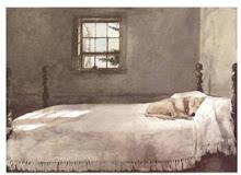 Tots es mereixen un bon llit...
