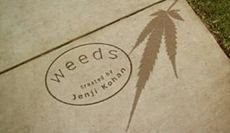 Watch Weeds S04E07 Online