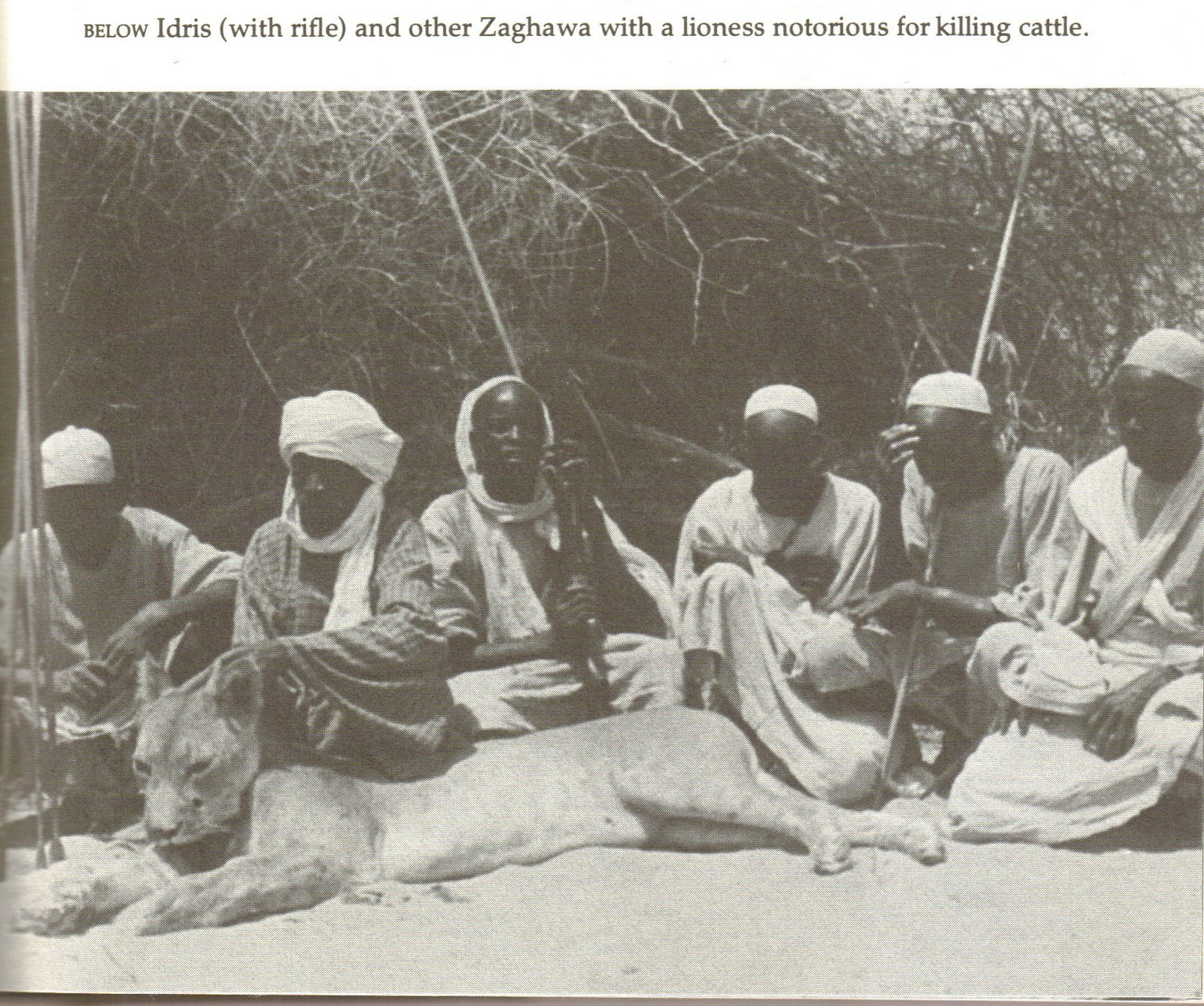 [Afar+Zaghawa+Sudan.jpg]