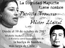 La Dignidad Mapuche tiene nombre...
