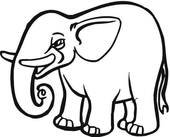 O Blog Das Cores Imagens De Elefante Para Pintar Desenhos Para