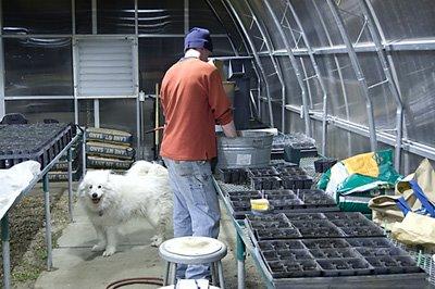 [erik_mya_greenhouse.jpg_1]