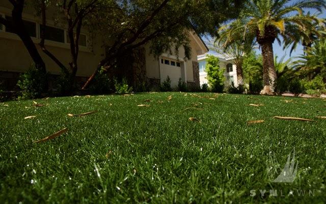 Natural Green Lawn Care Bridgewater Nj