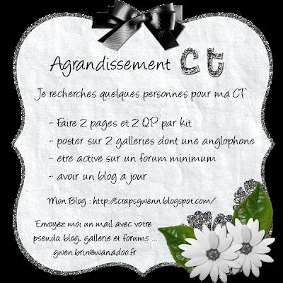 Agrandissement CT [ relance au 20/08] Agrandissement+CT