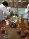 Laporan Percobaan  Praktikum  Asam dan Basa