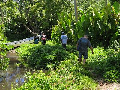 Epinup Mangrove Chuuk