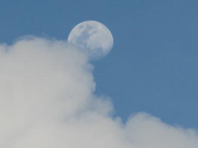 Saipan Moon