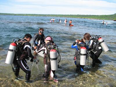 Laulau Beach Divers