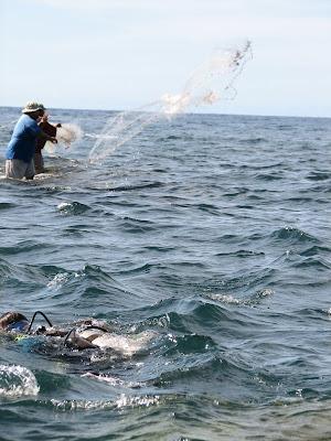 Divers and Fishermen Saipan
