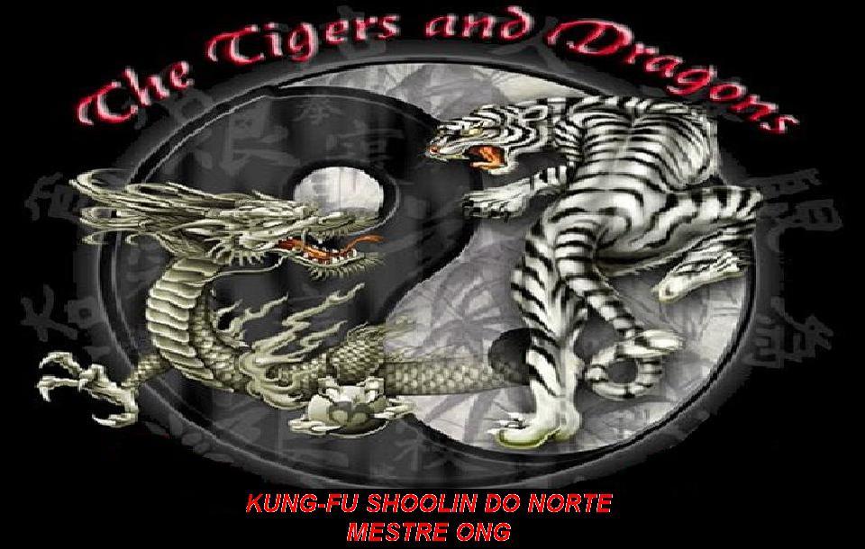 Associação de Kung-fu Shaolin do norte