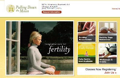 Integrative Care for Fertility is a holistic approach to increasing a woman's fertility, through fertility acupuncture, fertility yoga classes, Mayan Abdominal and therapeutic massage, nutrition counseling, spirituality classes and other unique offerings designed to help a couples conceive