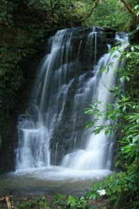 beautiful picture of a waterfall