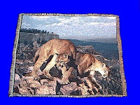 mountain lion blanket cougar throw tapestry USA