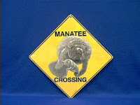 manatee crossing sign