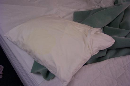 Mattress Man Online Worcester: Should I replace my pillow ...