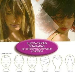 Fichas tecnicas de corte de cabello
