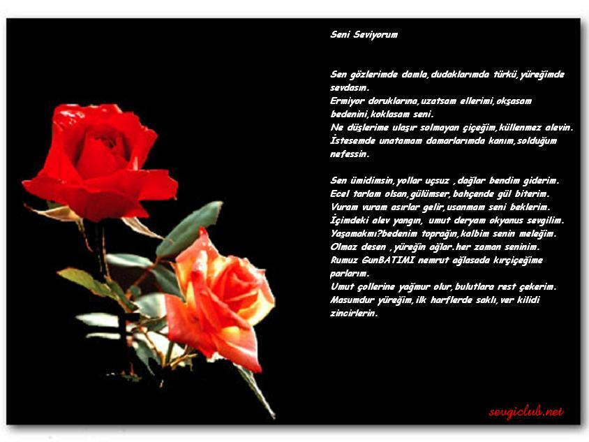 resimli_siir_3.jpg