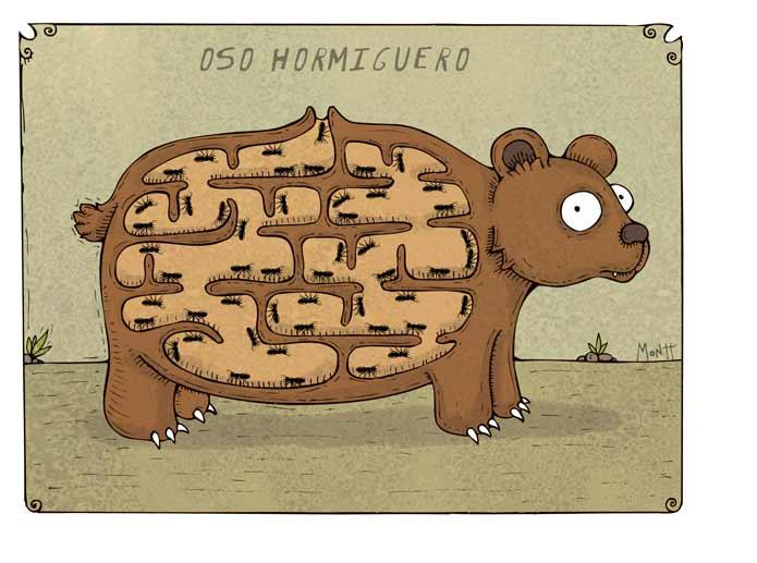 Oso Caricatura