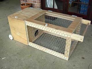 Handyman home renovation information for Guinea pig cage blueprints