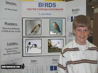 "funny science fair projects. Science Fair Project"" is:"