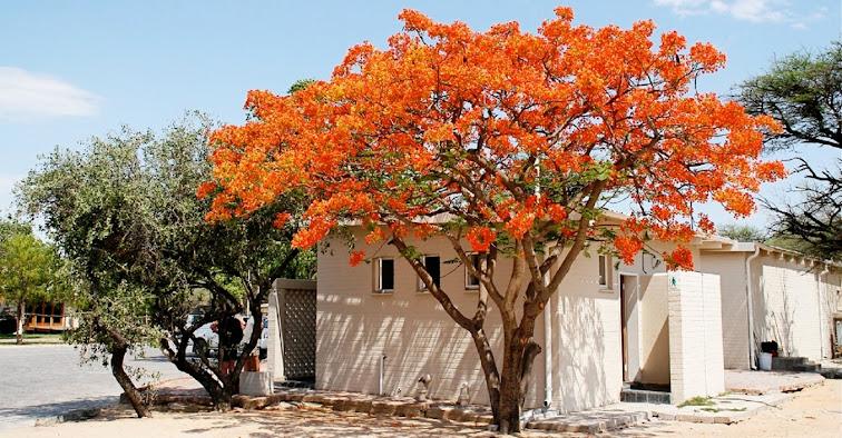 Isto É Angola