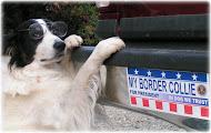 JET for President
