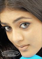 Parvati Melton [www.picdance.blogspot.com]