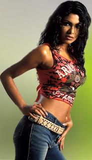 Priyanka Chopra gets pregnant