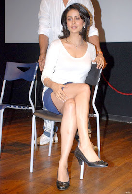 Gul Panag showing her Sexy Ass at the Press Meet of Hello Darling