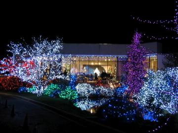 christmas outside lights