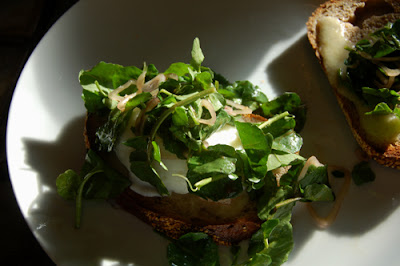 My poached egg sandwich!
