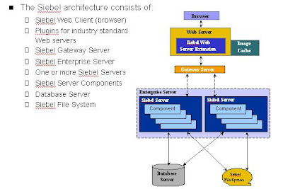 The browser and the siebel user interface in siebel crm tutorial.