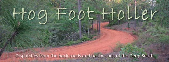 Hog Foot Holler