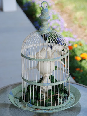 Love Birds in a bird cage. I made this little display for my patio.