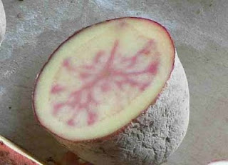 Food Safety New Red Potatoes Have Pink Streaks Inside