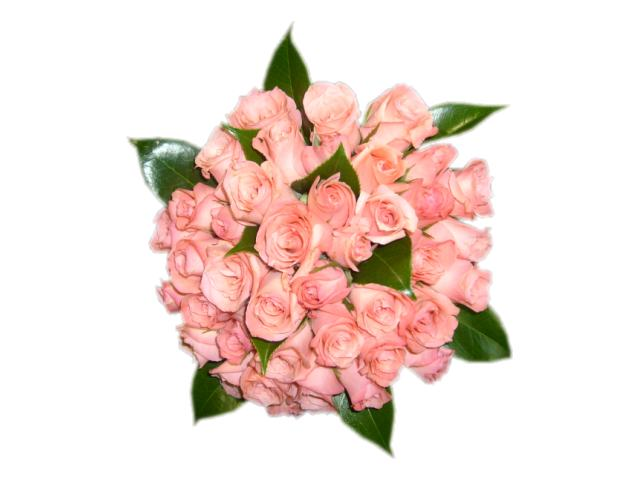 15 Anos Ramos: Novias Y Mucho Más: Bouquet: Ramos De Flores En Rosa
