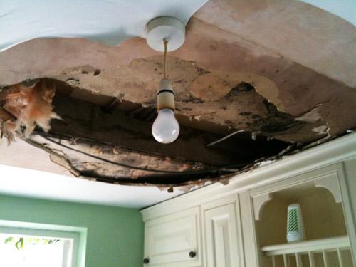 https://i1.wp.com/1.bp.blogspot.com/_jAuY8daappg/TD37vC5gk6I/AAAAAAAADqc/TzeG4ISr7n4/s1600/Collapsed-ceiling.jpg