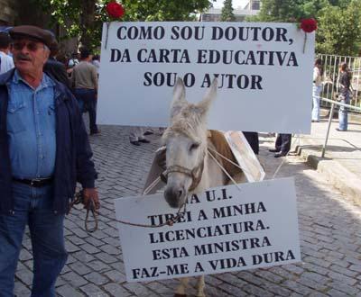 [burro]