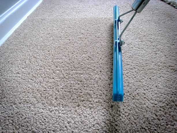 This Fresh Fossil  Home Maintenance  Carpet Rakes     motion to raking leaves outside  Just pull towards you  in the opposite  direction of the carpet pile  This creates a uniform look throughout the  carpet