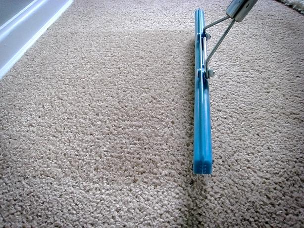This Fresh Fossil: Home Maintenance: Carpet Rakes