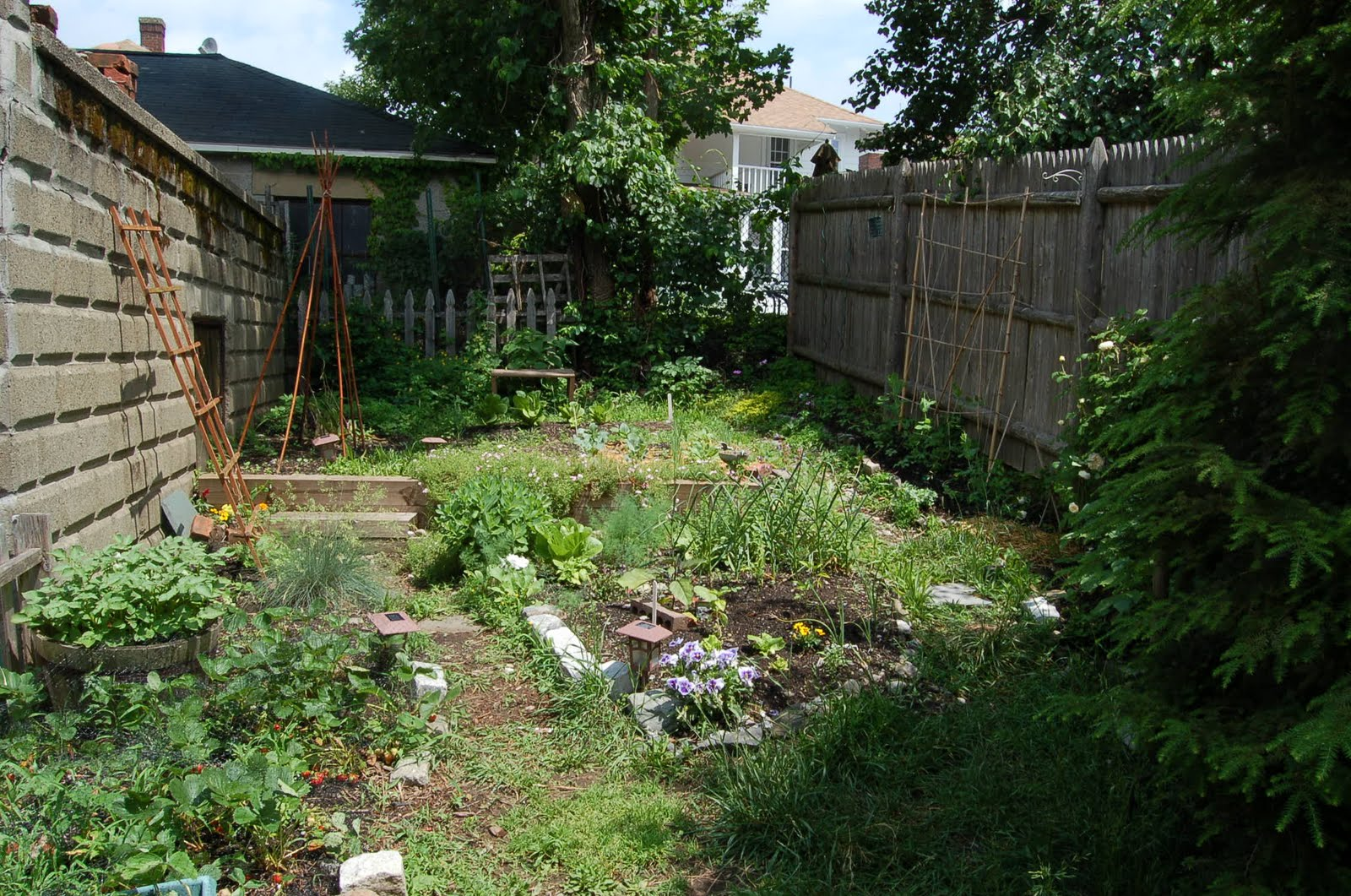 Boston Backyard Gardener: Permaculture and the backyard garden on Backyard Permaculture Design id=37947