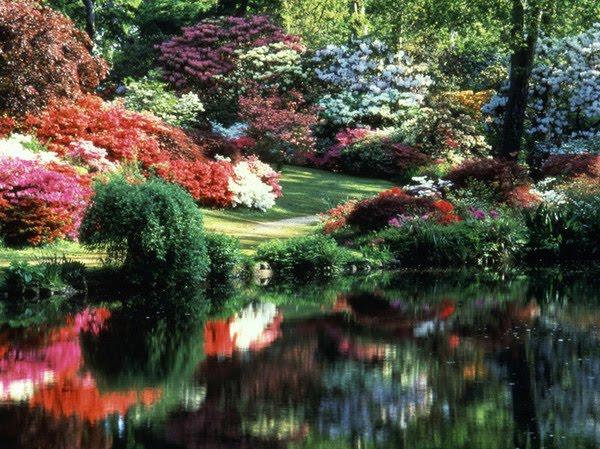 God S Beautiful Garden Mark 4 13 20 Bronze Magazine