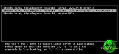 Ubuntu recovery