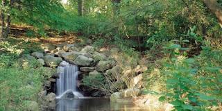 Prospect Park Fallkilll Falls