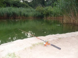 A Fishing Rod Is Waiting.....