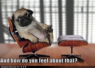 Chistes, imágenes e historias graciosas - Página 4 Funny-dog-pictures-psychiatrist-pug