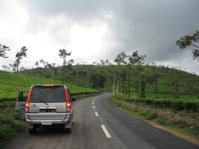 Great road amidst tea plantations, Wayanad