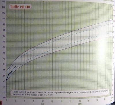 58 cm